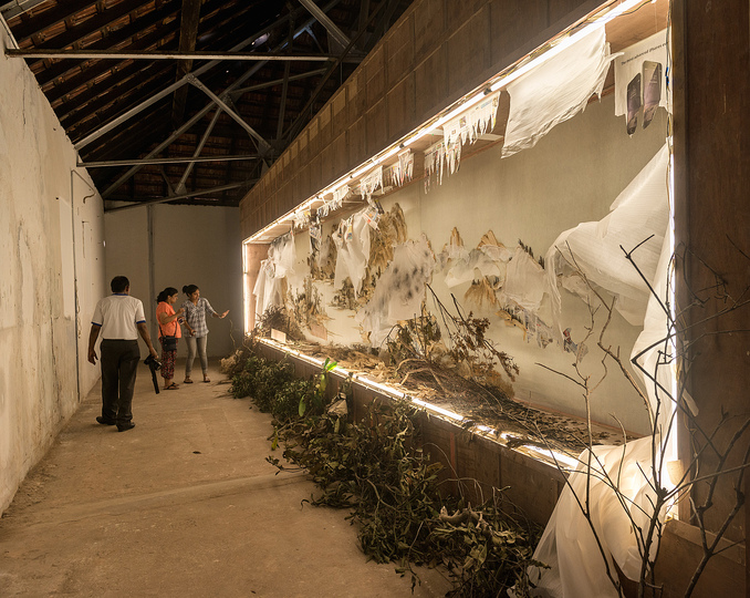Kochi Biennale 2014: Xu Bing's Background Story: Endless Xishan Mountain Scenery(2014)  installed at Aspinwall House.
